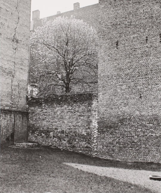 »Berlin, Kastanienallee«, 1985