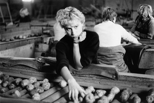 aus: »Bilder aus Beerfelde«, 1984 – 1987
